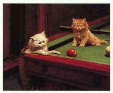 """Snookered"" by George Hughes"